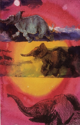 Three elephants againsta  glorious brightly coloured sky